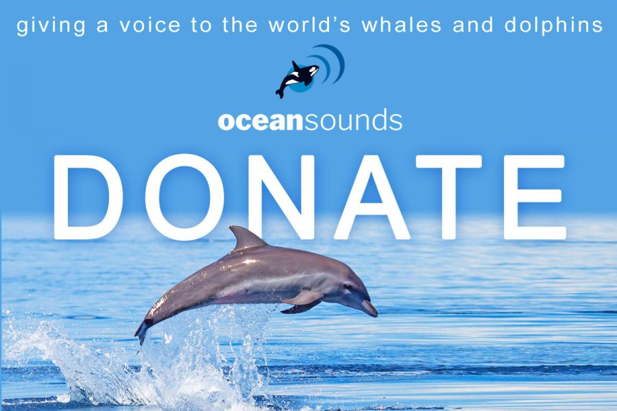 Ocean Sounds Whale and Dolphin Donate